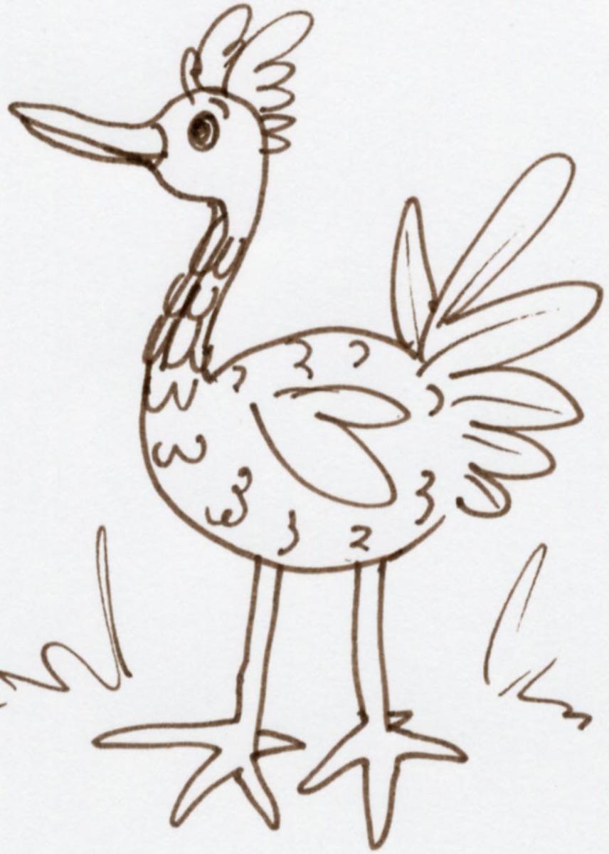 Bird Illustration © Jan Lane